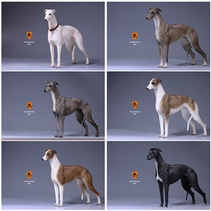 Mr.Z Real Animal Series No.14 1/6TH Scale Greyhound Statue