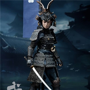 POPTOYS W003 The Second of Warrior Women Series: The Butterfly Helmets Female Warriors - The Old Armor (Standard Version)