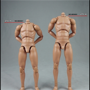 COOMODEL 1/6 NEW:2.0 Muscle male Body NO:BD003