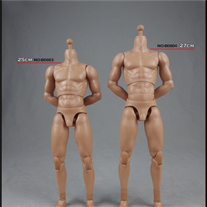 COOMODEL 16 NEW2.0 standard male Body NO BD001