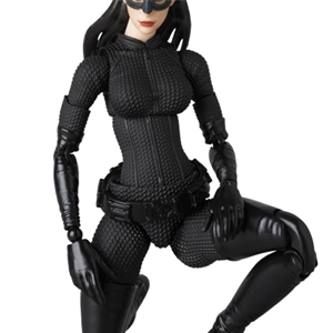he Dark Knight Rises Selina Kyle Catwoman