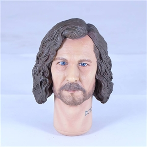 1/6 Scale Sirius Black Original Head