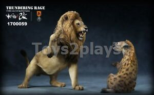MR.Z 1/12 THUNDERING Rage African lion VS Spotted hyena Dog